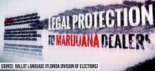 A screengrab from the Drug Free Florida Committee against Amendment 2 in Florida, a measure to allow medical marijuana. The measure failed. Drug Free Florida Committee/YouTube